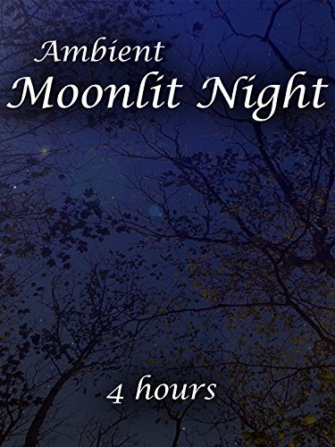 Ambient Moonlit Night (4 hours) (2017) - Amazon Prime Instant Video