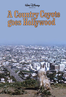 A Country Coyote Goes Hollywood (1965)