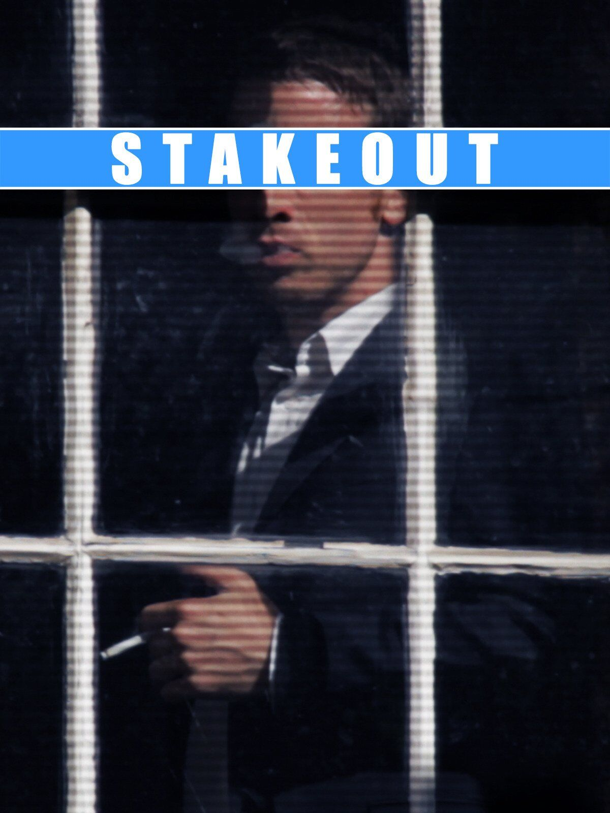 Stakeout (2011)