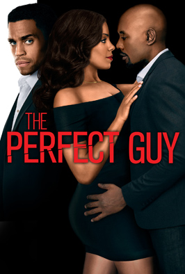 Watch The Perfect Guy Online