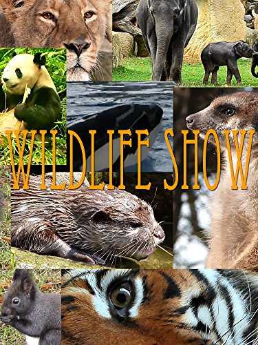 Watch Wildlife Show (2017) Online